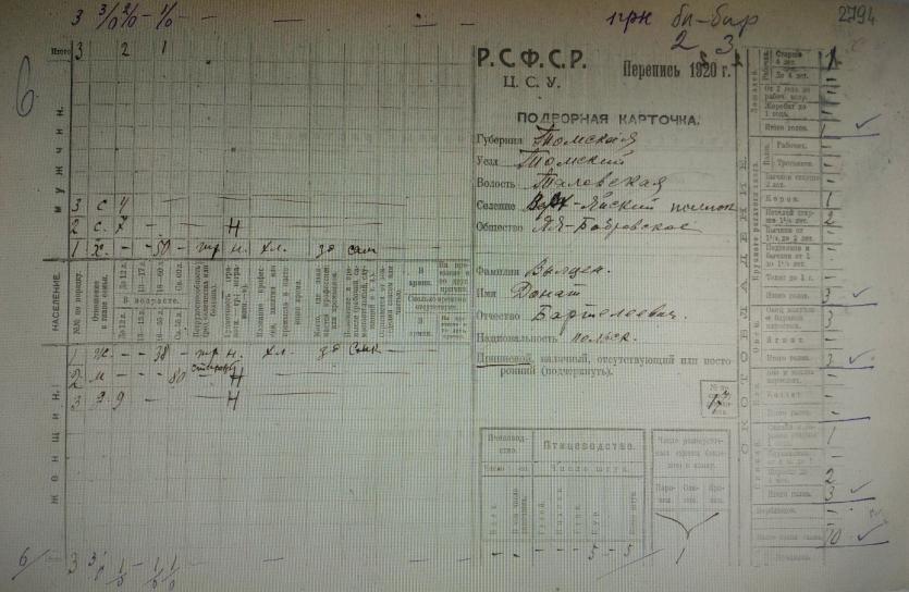 Подворовая перепись 1920 года. Семья Вылцен Д.Б.